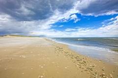 Island Beach, Seaside Park, NJ (rayplato) Tags: islandbeach seasideheights newjersey atlanticcity casinos tropicana borgata seaside ocean beach