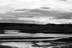 Spey bay (tommyajohansson) Tags: blackandwhite blancoynegro monochrome geotagged scotland unitedkingdom moray weekendbreak faved blancetnoir svartvitt speybay citybreak schwarzundweiss tommyajohansson