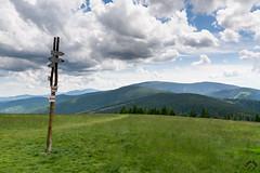 DSC_3760 (czargor) Tags: mountains landscape hill mountainside beskidy inthemountain dogtrekking beskidzywiecki