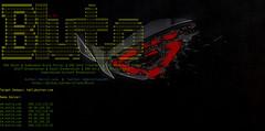 bluto-1-99 (screencapture) Tags: bluto email domain subdomain enumeration bruteforce dns recon