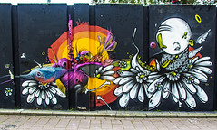P Bosmans (Dutch_Chewbacca) Tags: graffiti berenkuil eindhoven rockcity art 040 noordbrabant netherlands dutch holland spray can colors canon dlsr sigma 23 july 2016 summer saturday weekend pretty street legal p bosmans
