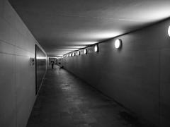 underground music (rainerralph) Tags: omdem1 tiergarten olympus hauptstadt berlin berlinmitte germany stadt outdoor siegessule grosserstern objektiv714pro city