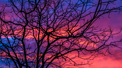 A sunrise of memories (jan_clewett) Tags: sunrise early morning psychedelic colours pinks vibrant abstract