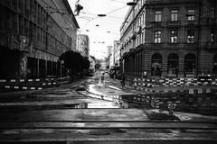 after the rain (gato-gato-gato) Tags: 35mm ilford leica leicasummiluxm35mmf14 schweiz strasse street streetphotographer streetphotography streettogs suisse svizzera switzerland zueri zuerich zurigo analog analogphotography believeinfilm film filmisnotdead filmphotography flickr gatogatogato gatogatogatoch homedeveloped rangefinder streetphoto streetpic summer tobiasgaulkech wwwgatogatogatoch leicasummilux35mmf14asph aspherical summilux zrich ch leicam6 m6 manualfocus manuellerfokus manualmode messsucher black white schwarz weiss bw blanco negro monochrom monochrome blanc noir strase onthestreets mensch person human pedestrian fussgnger fusgnger passant sviss zwitserland isvire