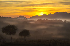 Winter Days ... (Alberto Nogueira Jr) Tags: winter brasil inverno campinagrandedosul amanhecer sunrise nascendosol neblinas albertonogueira
