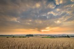 vanilla sky (Zesk MF) Tags: vanilla sky zesk nature sun sunset sonnenuntergang skyfire himmel kornfeld draussen outdoor hdr clods nikon 8mm sigma