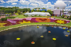 International Flower & Garden Festival - Disney's Epcot (J.L. Ramsaur Photography) Tags: jlrphotography nikond7200 nikon d7200 photography photo lakebuenavistafl centralflorida orangecounty florida 2016 engineerswithcameras epcot disneysepcot photographyforgod thesouth southernphotography screamofthephotographer ibeauty jlramsaurphotography photograph pic waltdisneyworld disney disneyworld butterflysonthego spaceshipearth waltdisney happiestplaceonearth wheredreamscometrue magical tennesseephotographer imagineering internationalflowergardenfestival waltdisneyworldresort bluesky deepbluesky beautifulsky whiteclouds clouds sky skyabove allskyandclouds flower flowers mickeyhead iconicspaceshipearth landscape southernlandscape nature outdoors godsartwork naturespaintbrush lagoon ridethemonorail ridethedisneymonorail
