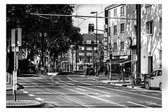 Hnninger weg (Onascht) Tags: dom hnningerweg kln nrw nikond610 sommer strassenbahn tokina100mmf28atxprodlens black brcke street white cologne strasse schwarzweis