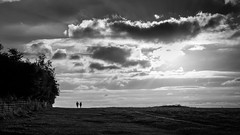 A couple in love - Amesbury, England - Black and white street photography (Giuseppe Milo (www.pixael.com)) Tags: grass natural calm print street beauty background trees plant contrast monochrome woman bw faceless wallart peaceful white fineart countryside tranquil prints country sunset plants figure people europe european outdoor outside tree sky clouds streetphotography sun man photograph nature candid horizontal cloud photo love blackandwhite photography beautiful black field onsale