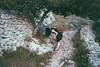 picking flowers (gorbot.) Tags: rangefinder valley sicily gorge roberta mmount leicam8 voigtlander28mmultronf19 riservanaturaleorientatapantalica