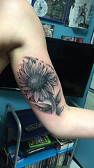 Freehand Sunflower tattoo by Wes Fortier at Burning Hearts Tattoo Co. | Waterbury, CT. www.burningheartstattoo.com