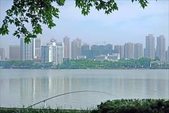 Le lac de l'Est (Wuhan, Chine)
