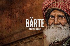 Twitter Tuesday: Brte (Stella_Y) Tags: hair beards tuesday challenge twitter brte twittertuesday