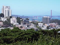 San Francisco (FRAUSCHNERT) Tags: sanfrancisco telegraphhill goldengatebridge architektur wolkenkratzer skyline ausblick pflanzen kalifornien sommer hitzewelle roadtrip rundreise mietwagen unterwegs highlights usa amerika westkste hitze heis urlaub frauschoenert reise highwaynr1
