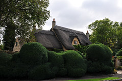 Thatched roof, Chipping Campden (schwerdf) Tags: britishisles chippingcampden england greatbritain hedges thatchedroofs