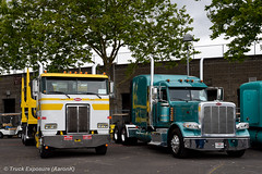 Hays Hauling 1999 Peterbilt 362 & Oldland 389 (Truck Exposure) Tags: coe cabover logtruck