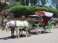 Marrakesh_9991 (JespervdBerg) Tags: holiday spring 2016 africa northafrican tamazight amazigh arab arabic moroccanstyle moroccan morocco maroc marocain marokkaans marokko marrakech marrakesh djemaaelfna