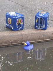 Street duck spotted ! (Rack Log) Tags: rack log duck on the streets fosters pint stolen goods