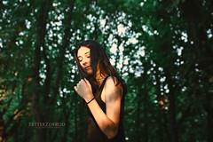 Mágico Atardecer (PetterZenrod) Tags: bosque forest green sun sol adela light petterzenrod girl atardecer sunset portail portraitphotography sigma 30mm f14 profundidaddecampo airelibre desenfoque