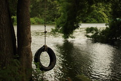 Tire Swing (AJ_YEAH) Tags: outdoor tire swing river tree rope canon 100d critique