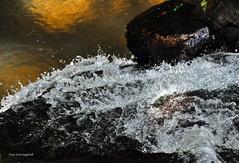 BOUNCING WATER (KayLov) Tags: vacation travel mountains ga georgia camping creek river waterfall running flowing moving rushing rocks