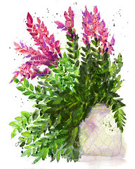 Basil and Thyme (Tonya Doughty) Tags: watercolor painting floral flower basil thyme plants
