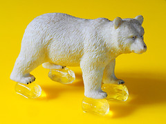 Global Warming & Polar Bears (fstop186) Tags: globalwarming polarbears climatechange higher temperatures risingsealevels icecap melting greenpeace scientists world greenhouse gas change extinction nature poster loss graphic glacier campaign glaciermints fox desert barren wilderness irony ironic sad fear