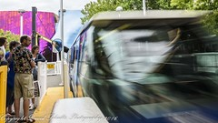 LOOK!! the Monorail (dschultz742) Tags: 07222016 d810 seattle nikon nikkor monorail theseattlecentermonorail nikonafs283003556gedvr