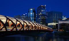 Peace Bridge - at night (leuntje) Tags: calgary alberta canada sunnyside downtown bridge peacebridge architecture nightshot bluehour calatrava santiagocalatrava bowriver