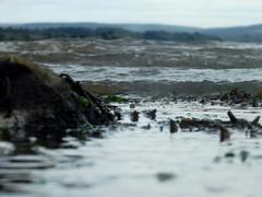 DSCF4066 (niknak2016) Tags: sea waves shore nature coast water rock ripples coastline coastal shoreline shallowwaters ocean seaweed naturalbeauty naturephotography seaphotography seascape beachphotography beautyinnature oceanphotography landscape landscapephotography picturesque scenics scenery closeup lowangle