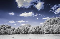 Ladywell Fields (blackwoodse6) Tags: infrared ir blue clouds trees foilage nikon 720nm park ladywell london uk southlondon southeastlondon hoyar72 nikond1x faslecolour infraredphotography ladywellfields londonparks bluesky lewisham d1x