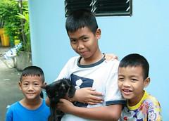 boys with their cat (the foreign photographer - ) Tags: three boys khlong thanon portraits bangkhen bangkok thailand canon kiss 400d