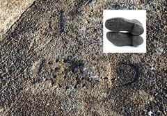 Nazi Jackboot footprint on a bunker on Alderney (neilalderney123) Tags: 2016neilhoward aldermey nazi history ww2 evil bunker shoe footprint