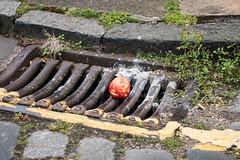2016-09-06-IMG_2035.jpg (m.o.n.o.c.h.r.o.m.e.) Tags: apple yellowline drain newtown edinburgh trash rubbish litter discarded
