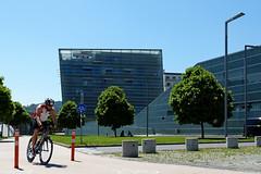 Racing Cyclist (Erich Hochstöger) Tags: street city trees bike bicycle architecture modern linz lumix austria österreich panasonic stadt architektur bäume fahrrad oberösterreich racer radfahrer rennrad upperaustria racingbicycle strase fz150 rennradfahrer
