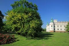 Baranów Sandomierski