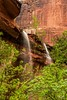 20150523 Emerald Pools (Zion)-1 (Tony Castle) Tags: park nature forest utah us waterfall unitedstates hurricane national pools zion znp emeral