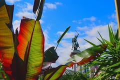 CLERMONT-FERRAND, LES JARDINS DE JAUDE (Gilles Poyet photographies) Tags: jardin jaude placedejaude clermontferrand puydedme auvergne auvergnerhnealpes france