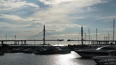 (spotykach) Tags: bridge construction russia saintpetersburg       westernrapiddiameter