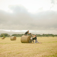 Dog rescue (Allan Rostron) Tags: dogs york england hay bales summer outdoor ricohgr