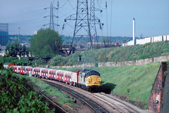 A few from the Oldies....8X01 ?? 37110 Derby-Didcot (West Ruslip) St Andrews Birmingham 21-05-1993 (the.chair) Tags: 8x01 37110 derbydidcor west ruislip st andrews bank 21051993