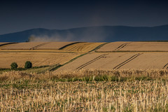 harvest (Borderli) Tags: harvest erntezeit summer fields golden colour darkclouds dust
