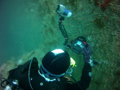 18 July 2016 - Scillies Trip PICT0201 (severnsidesubaqua) Tags: scillies scilly scuba diving