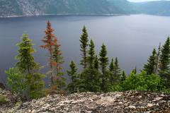 Fjord du Saguenay (4) (montrealrider) Tags: nikkor20mmf35ai fjorddusaguenay