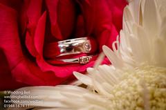 Wedding Bell-322 (weddingbellbd.com) Tags: dhaka details dhanmondi decoration desi bangladesh bride bangladeshi bridal beauty bokeh backlilght wedding weddingbell woman walima nikon nikkor bangles female follow facebook