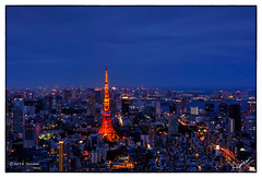 Tokyo Drift (msankar4) Tags: moriartmuseum roppongihills skydeck rooftop observationdeck tower tokyotower tokyo shibuya night bluehour 360 msankar sankarraman sankarramanphotography aerialphotography aerial