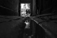 In the gutter (Per sterlund) Tags: stockholm oldtown sweden scandinavia europe gutter water alley street streetphotography streetphoto streetshot streetbnw streetbw bnw bw baw noiretblanc strasenfotografie fotografiadistrada fotografadecalle photographiederue 2016