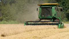 CombineAug2009NearSsideGPEIBLS_6838x_AGR (Government of Prince Edward Island) Tags: combine grain cereals johndeere harvesting harvest