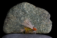 Dry Fly on the Rocks (KellarW) Tags: stone rock riverstone fishingfly flyfishing handcrafted fly ontherocks etsy onblack onrocks riverstones madeinamerica dryfly madeinusa handmade fliesandfeathers fishing fishinglure