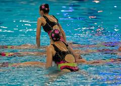 O5084274 (roel.ubels) Tags: swimming european ek alexander championships willem hoofddorp synchronised ec synchro synchronized syncronized 2015 sincro synchroonzwemmen leneuropeansynchronisedswimmingchampionscuphaarlemmermeer2015 europeanchampionscup2015